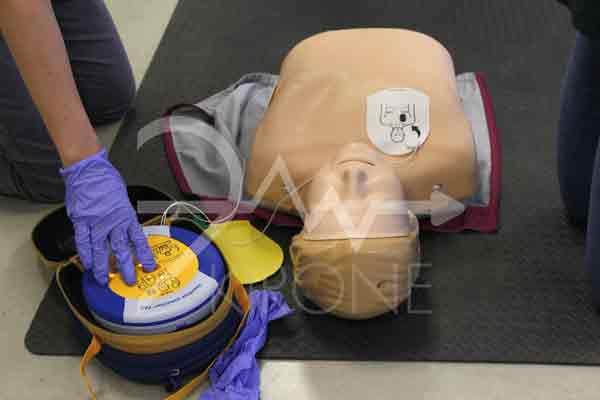 Blsd adulto e defibrillatore